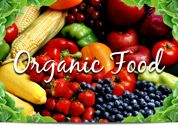 My Opinion About Organic Food